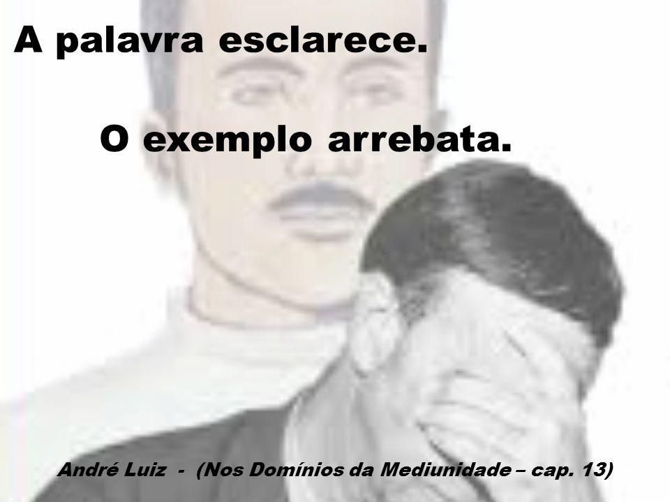 A palavra esclarece. O exemplo arrebata. André Luiz - (Nos Domínios da Mediunidade – cap. 13)