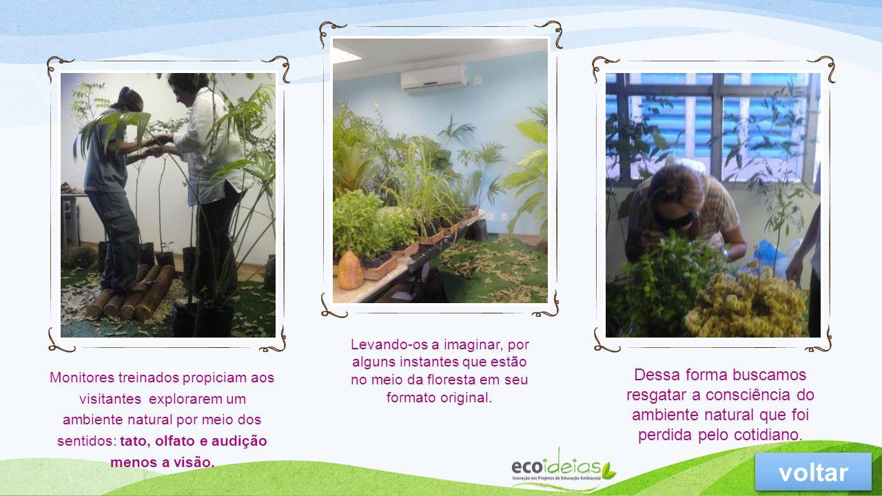 Atividade planejada para sensibilizar adultos e crianças para o uso consciente dos recursos naturais.