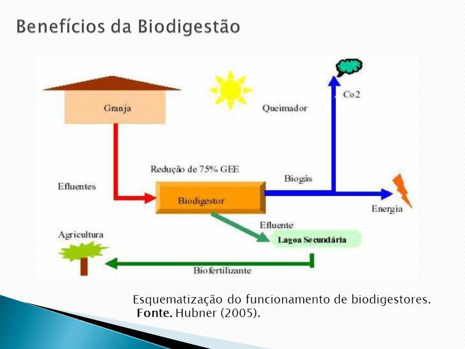 Esquematização do funcionamento de biodigestores. Fonte. Hubner (2005).