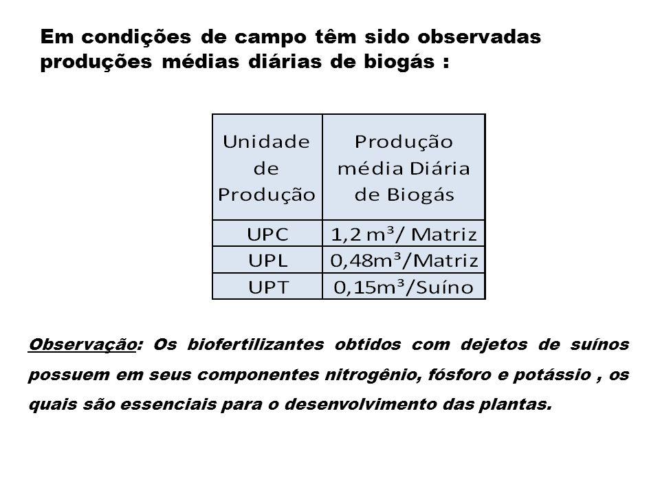 Em condições de campo têm sido observadas produções médias diárias de biogás : Observação: Os biofertilizantes obtidos com dejetos de suínos possuem e