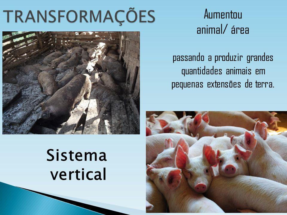 Aumentou animal/ área passando a produzir grandes quantidades animais em pequenas extensões de terra. Sistema vertical