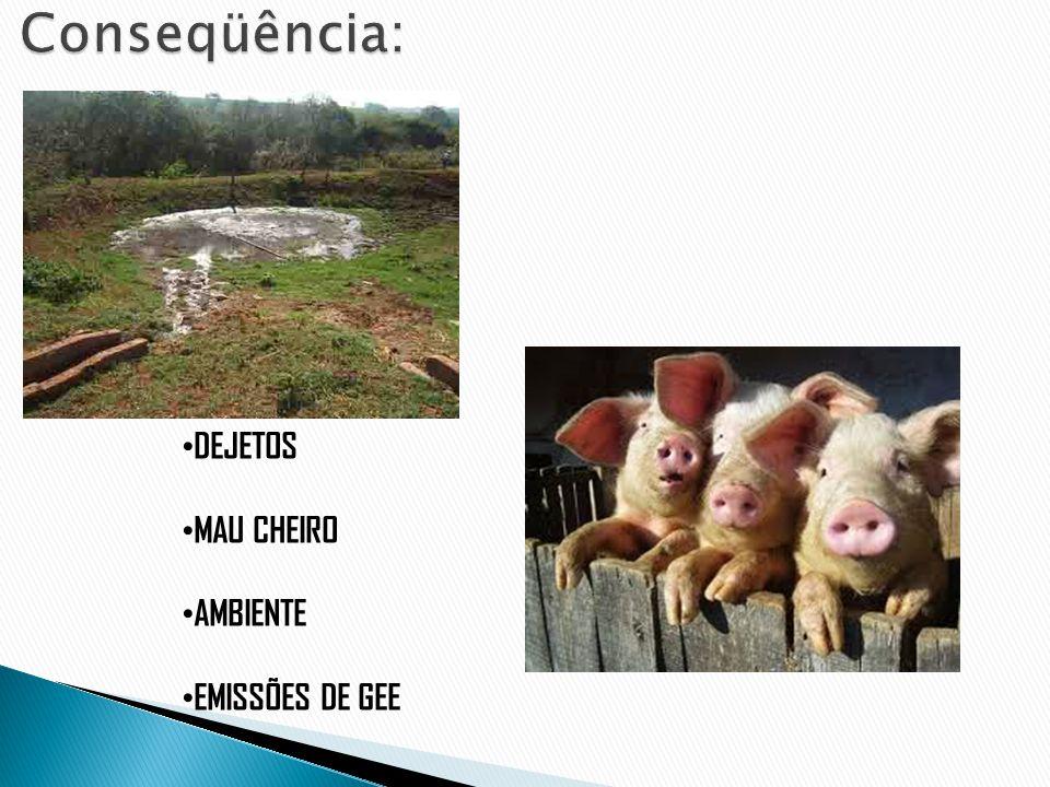 DEJETOS MAU CHEIRO AMBIENTE EMISSÕES DE GEE