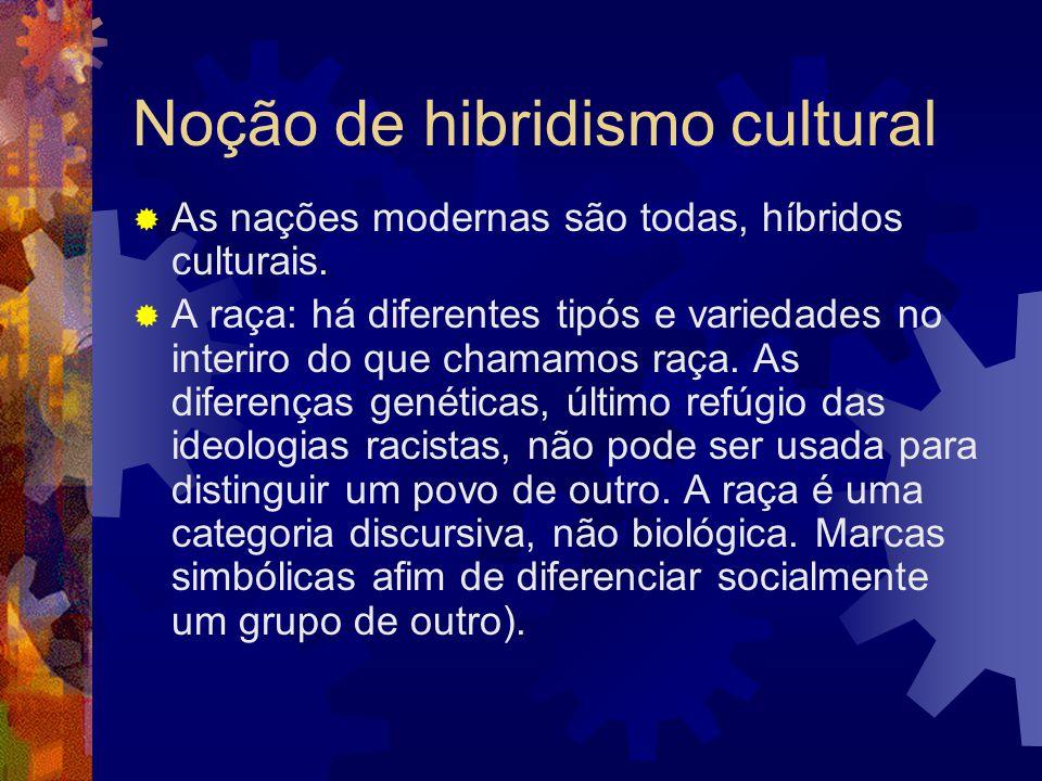 Noção de hibridismo cultural  As nações modernas são todas, híbridos culturais.  A raça: há diferentes tipós e variedades no interiro do que chamamo