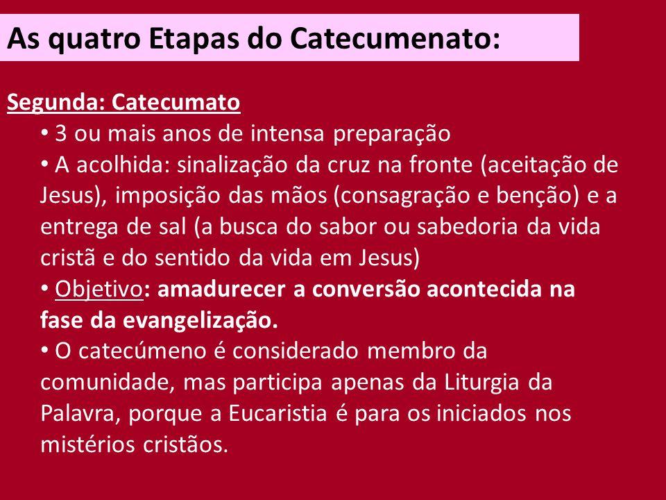 As quatro Etapas do Catecumenato: Segunda: Catecumato Estudo da Sagrada Escritura, do Credo e da moral.