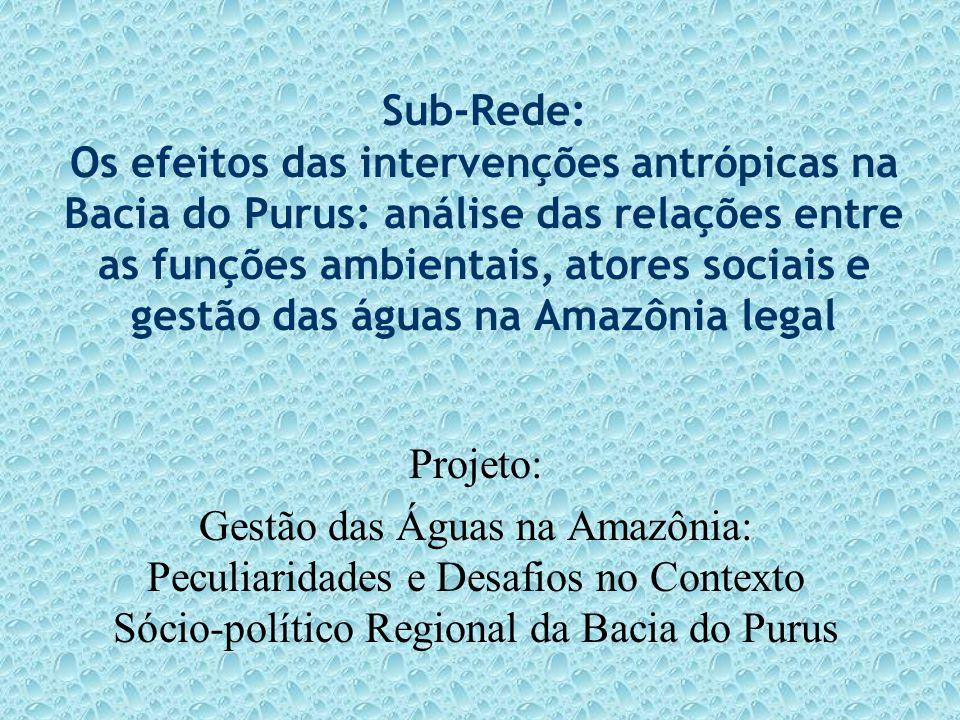 Sub-Rede: Os efeitos das intervenções antrópicas na Bacia do Purus: análise das relações entre as funções ambientais, atores sociais e gestão das água