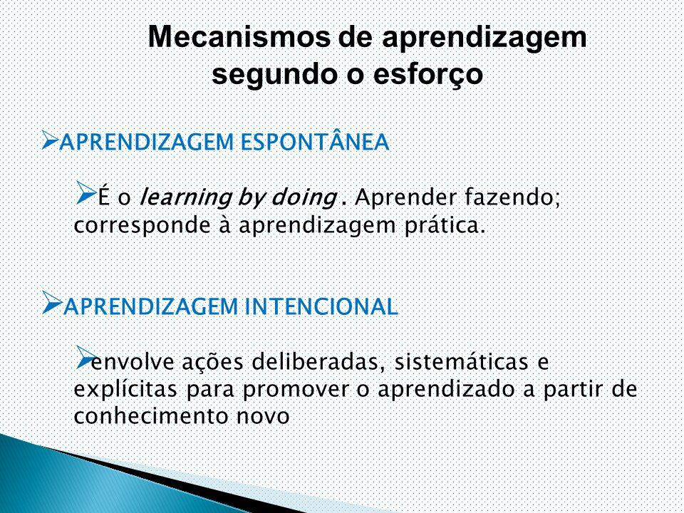 Mecanismos de aprendizagem segundo o esforço  APRENDIZAGEM ESPONTÂNEA  É o learning by doing.
