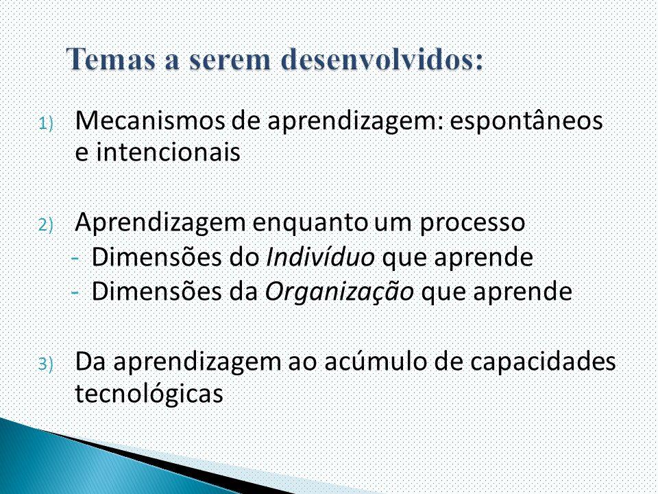 1) Mecanismos de aprendizagem: espontâneos e intencionais 2) Aprendizagem enquanto um processo -Dimensões do Indivíduo que aprende -Dimensões da Organização que aprende 3) Da aprendizagem ao acúmulo de capacidades tecnológicas