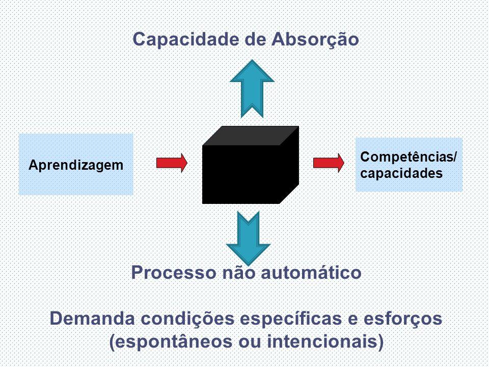 Capacidade de Absorção Aprendizagem Competências/ capacidades Processo não automático Demanda condições específicas e esforços (espontâneos ou intencionais)