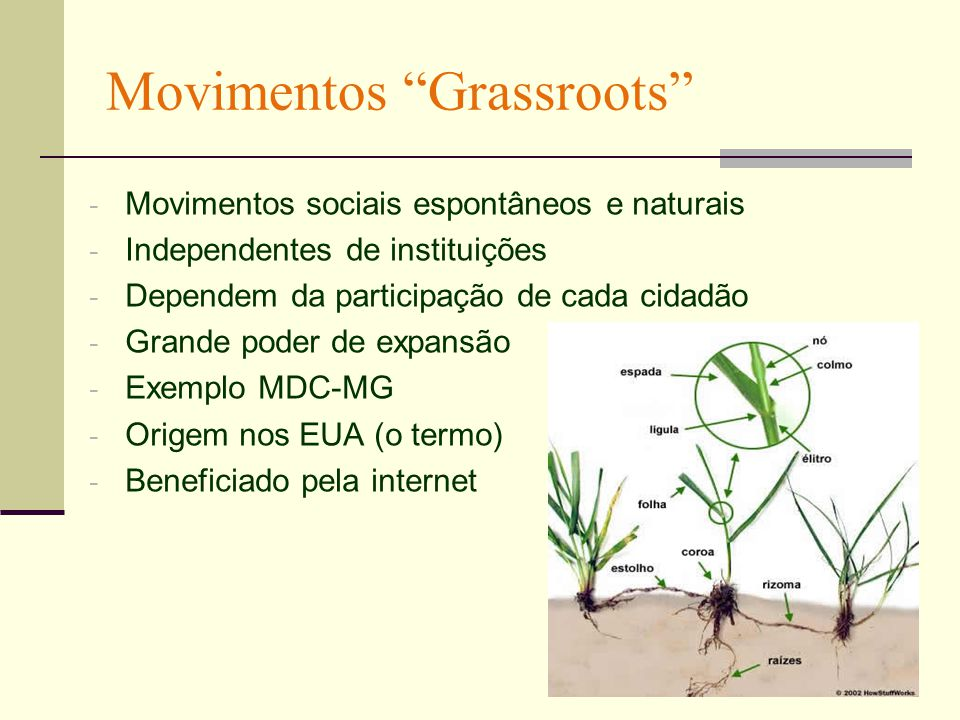 Movimentos Grassroots - Movimentos sociais espontâneos e naturais - Independentes de instituições - Dependem da participação de cada cidadão - Grande poder de expansão - Exemplo MDC-MG - Origem nos EUA (o termo) - Beneficiado pela internet