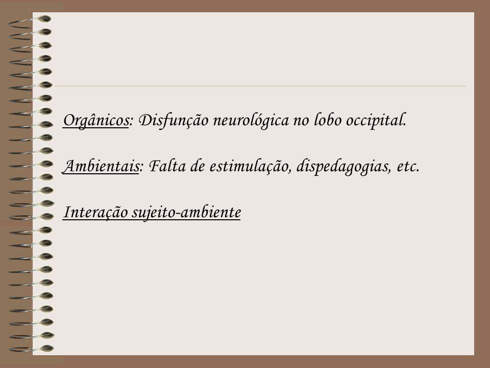 Orgânicos: Disfunção neurológica no lobo occipital. Ambientais: Falta de estimulação, dispedagogias, etc. Interação sujeito-ambiente