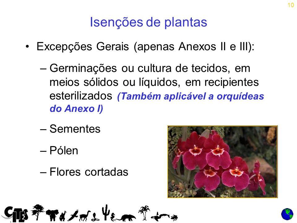 10 Isenções de plantas Excepções Gerais (apenas Anexos II e III): –Germinações ou cultura de tecidos, em meios sólidos ou líquidos, em recipientes esterilizados (Também aplicável a orquídeas do Anexo I) –Sementes –Pólen –Flores cortadas