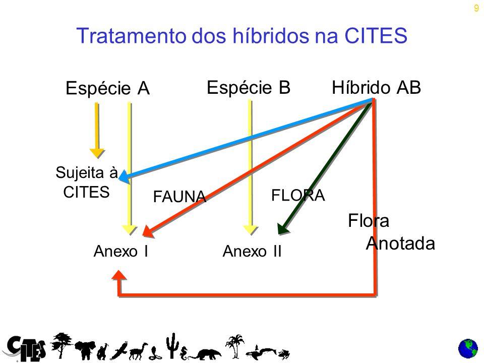 9 Tratamento dos híbridos na CITES Espécie A Híbrido AB =X Espécie B Sujeita à CITES Anexo IAnexo II FAUNA Flora Anotada FLORA