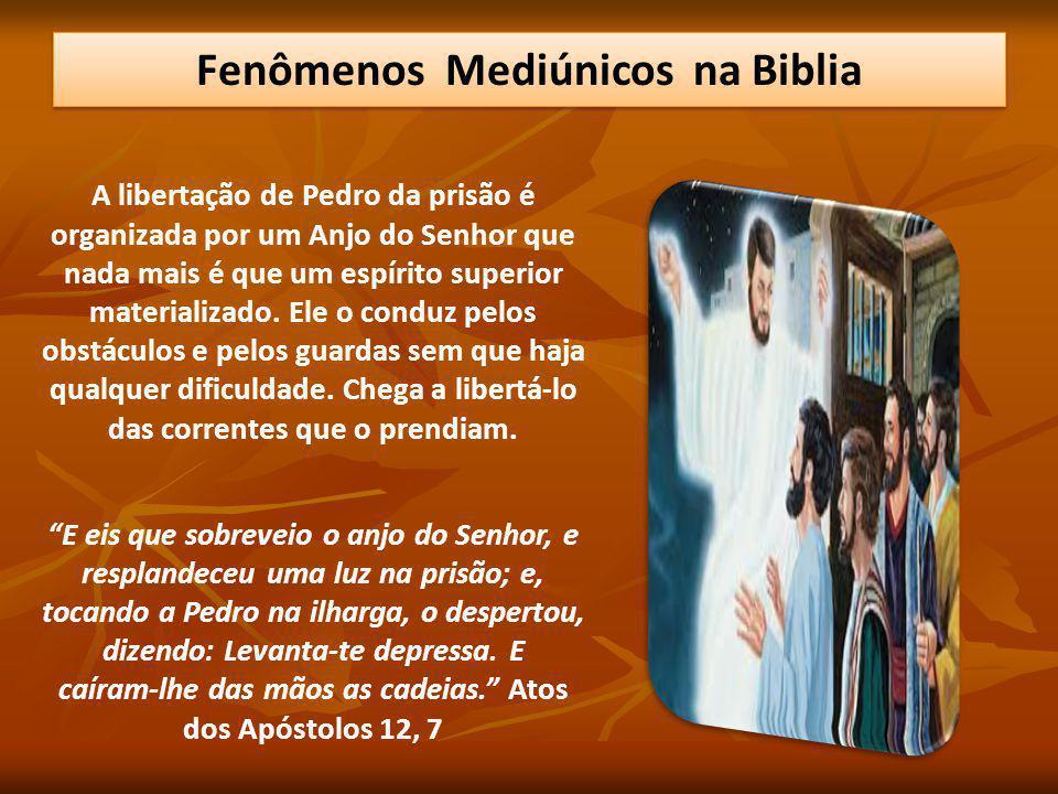 A libertação de Pedro da prisão é organizada por um Anjo do Senhor que nada mais é que um espírito superior materializado. Ele o conduz pelos obstácul