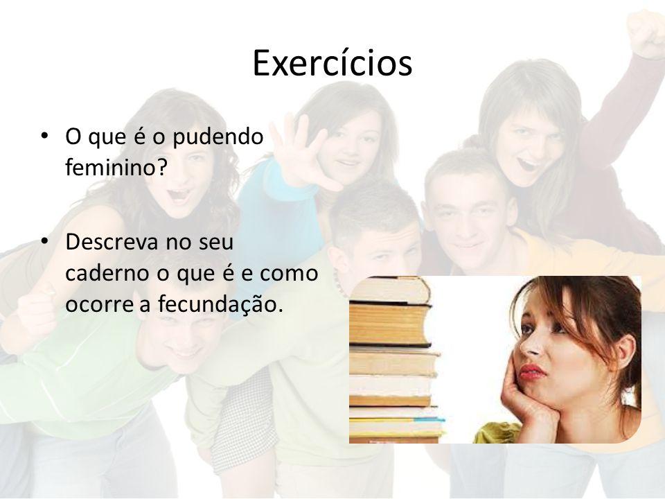 Exercícios O que é o pudendo feminino? Descreva no seu caderno o que é e como ocorre a fecundação.