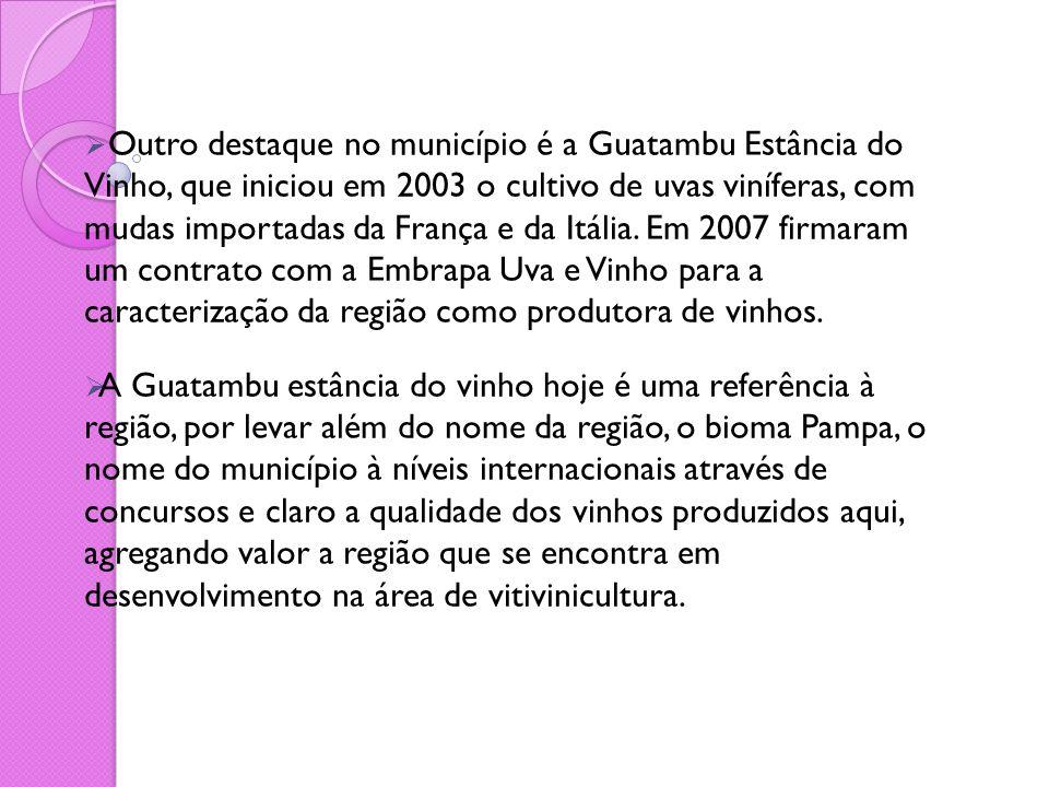  Outro destaque no município é a Guatambu Estância do Vinho, que iniciou em 2003 o cultivo de uvas viníferas, com mudas importadas da França e da Itá