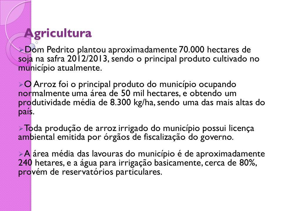 Agricultura  Dom Pedrito plantou aproximadamente 70.000 hectares de soja na safra 2012/2013, sendo o principal produto cultivado no município atualme