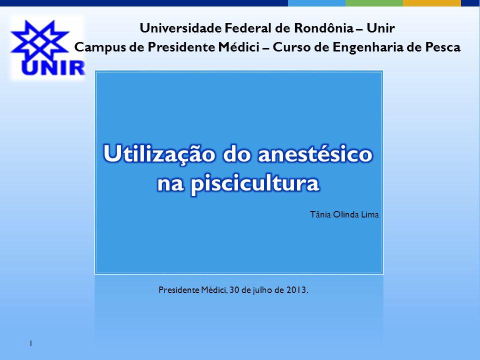 Presidente Médici, 30 de julho de 2013. 1 Tânia Olinda Lima Universidade Federal de Rondônia – Unir Campus de Presidente Médici – Curso de Engenharia