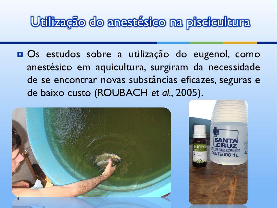  Os estudos sobre a utilização do eugenol, como anestésico em aquicultura, surgiram da necessidade de se encontrar novas substâncias eficazes, segura