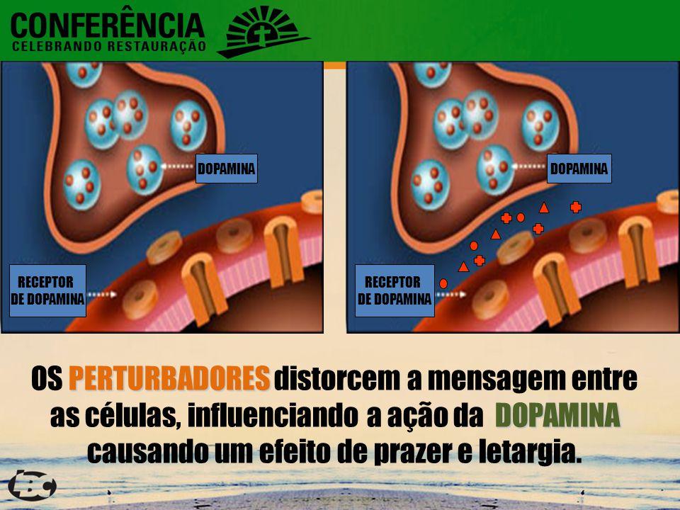 RECEPTOR DE DOPAMINA DOPAMINA RECEPTOR DE DOPAMINA DOPAMINA PERTURBADORES DOPAMINA OS PERTURBADORES distorcem a mensagem entre as células, influenciando a ação da DOPAMINA causando um efeito de prazer e letargia.