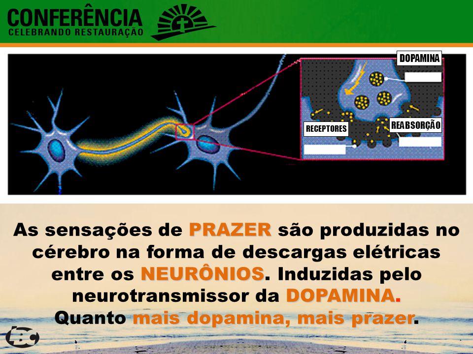 RECEPTORES REABSORÇÃO DOPAMINA PRAZER NEURÔNIOS DOPAMINA.