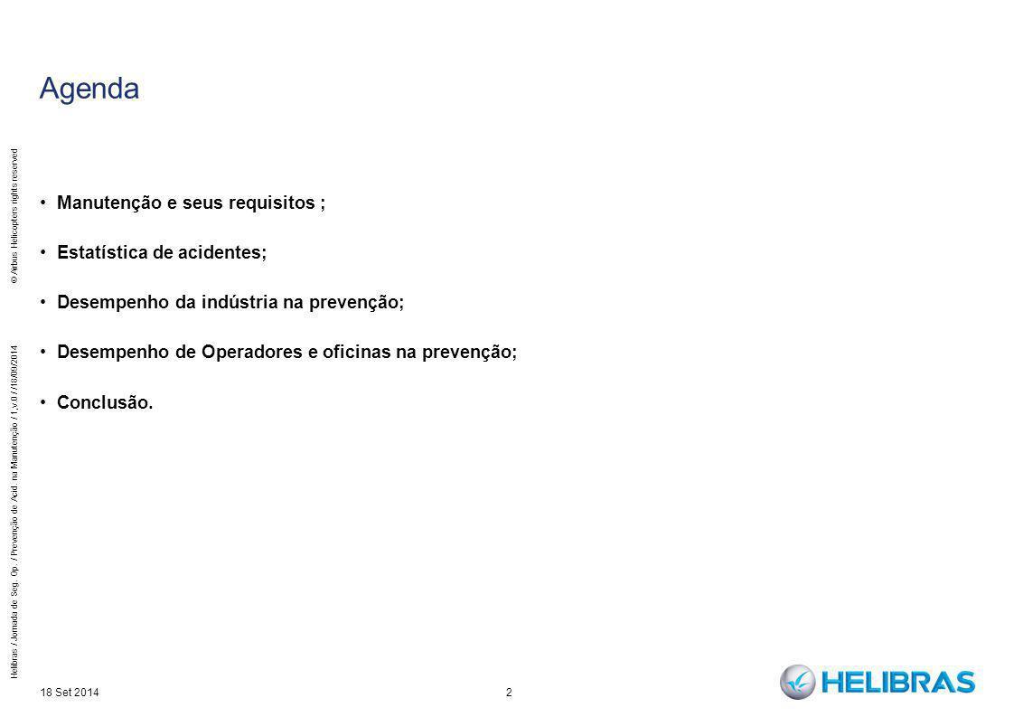 Agenda Manutenção e seus requisitos ; Estatística de acidentes; Desempenho da indústria na prevenção; Desempenho de Operadores e oficinas na prevenção