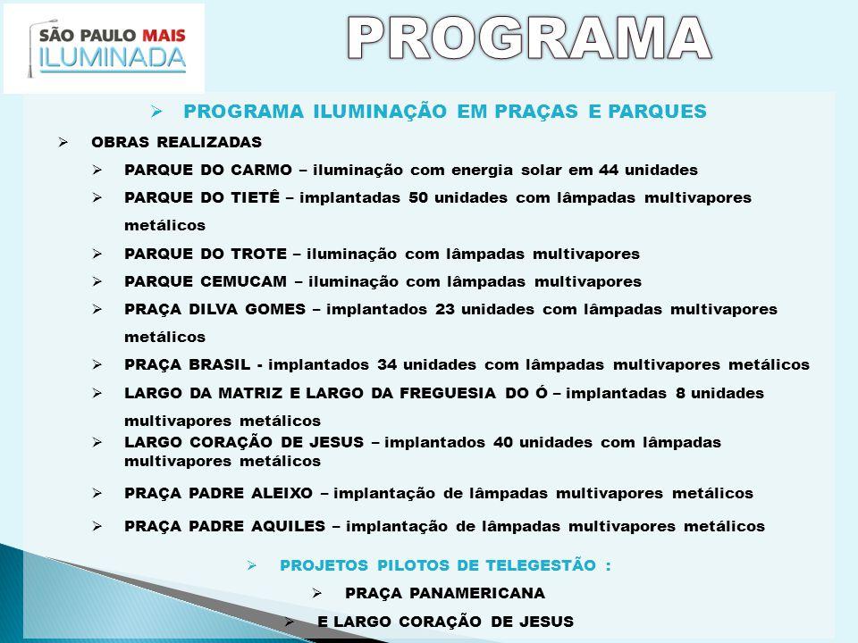 AMPLIAR AS FRONTEIRAS DO DESENVOLVIMENTO DE SÃO PAULO POR MEIO DE AÇÕES URBANÍSTICAS TENDO COMO REFERÊNCIA OS SEGUINTES EIXOS VIÁRIOS ESTRATÉGICOS Marginal Pinheiros – Projeto em elaboração Corredor Cupecê – Roque Petroni Jr.