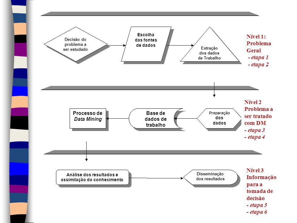 Preparação dos dados Processo de Data Mining Base de dados de trabalho Extração dos dados de Trabalho Escolha das fontes de dados Decisão do problema a ser estudado Nível 1: Problema Geral - etapa 1 - etapa 2 Nível 2 Problema a ser tratado com DM - etapa 3 - etapa 4 Nível 3 Informação para a tomada de decisão - etapa 5 - etapa 6 Disseminação dos resultados Análise dos resultados e assimilação do conhecimento