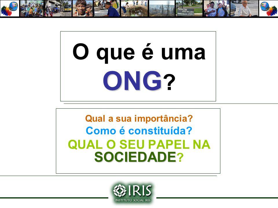 ONG O que é uma ONG ? Qual a sua importância? Como é constituída? SOCIEDADE QUAL O SEU PAPEL NA SOCIEDADE ?