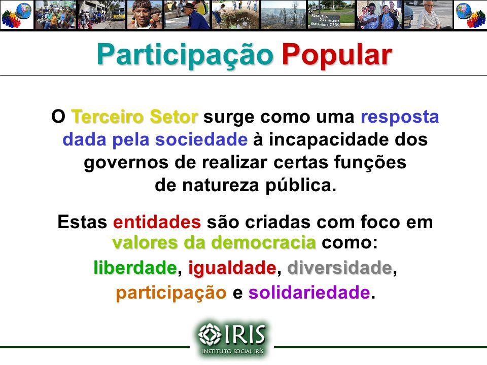 Terceiro Setor O Terceiro Setor surge como uma resposta dada pela sociedade à incapacidade dos governos de realizar certas funções de natureza pública