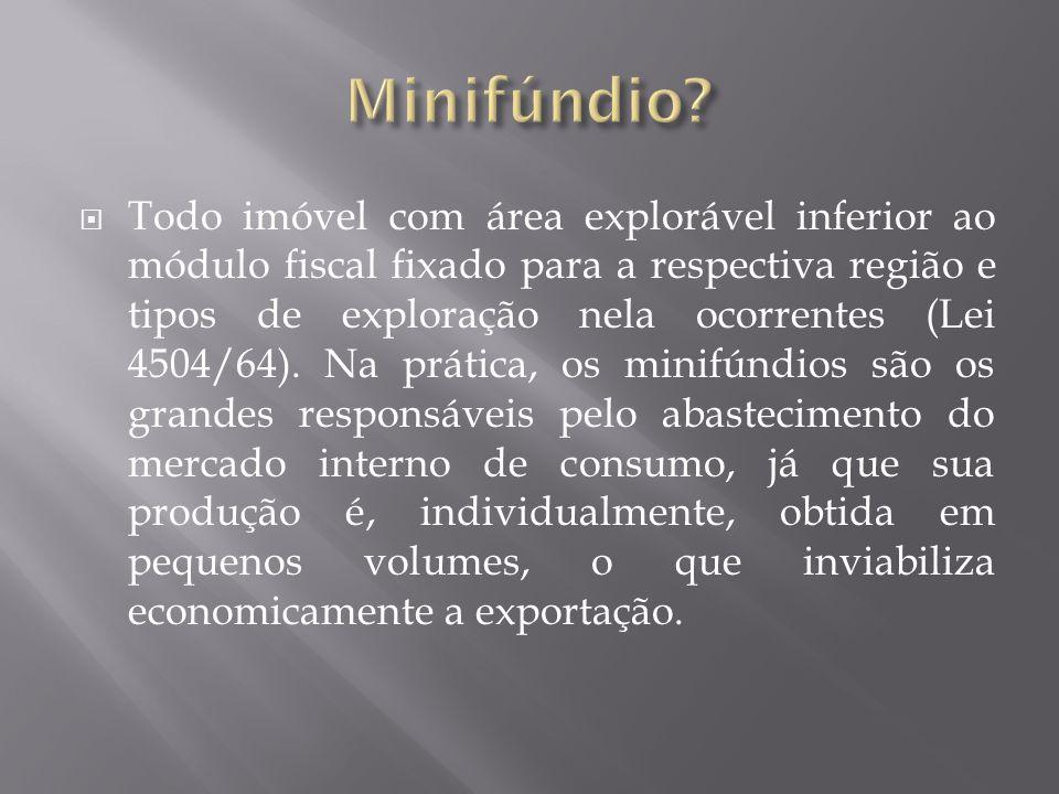  Todo imóvel com área explorável inferior ao módulo fiscal fixado para a respectiva região e tipos de exploração nela ocorrentes (Lei 4504/64). Na pr