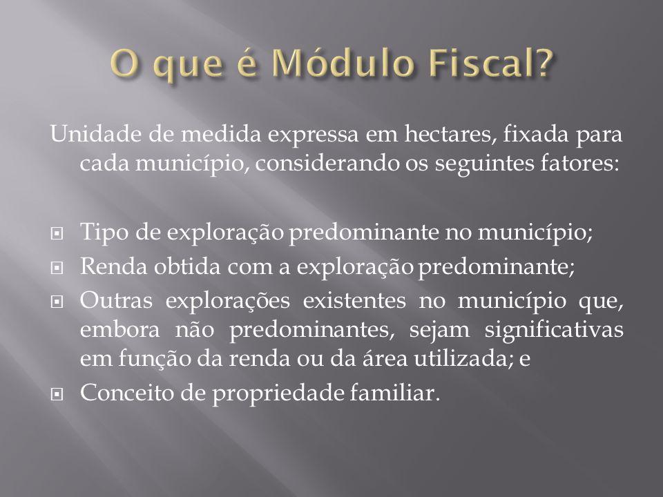 Unidade de medida expressa em hectares, fixada para cada município, considerando os seguintes fatores:  Tipo de exploração predominante no município;