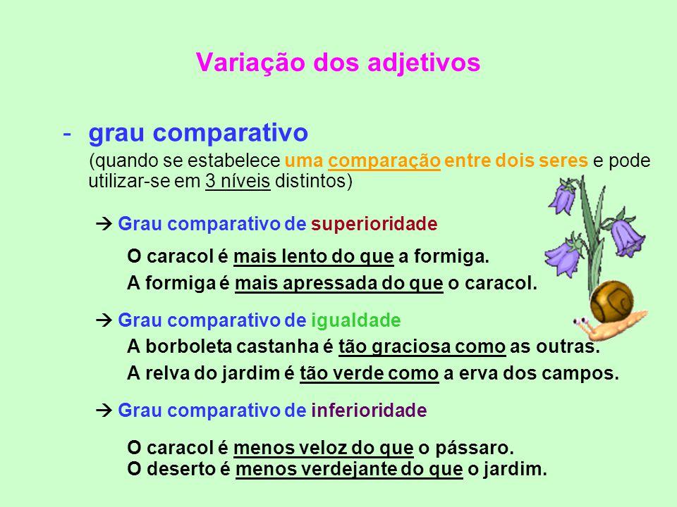 Variação dos adjetivos -grau normal (quando se exprime uma característica de forma direta, natural) Frases ex: O coelho branco é veloz. Um Sol brilhan