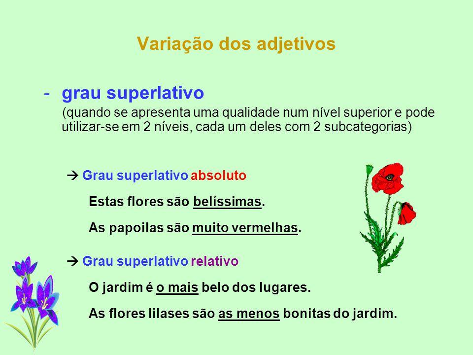 Variação dos adjetivos -grau comparativo (quando se estabelece uma comparação entre dois seres e pode utilizar-se em 3 níveis distintos)  Grau compar