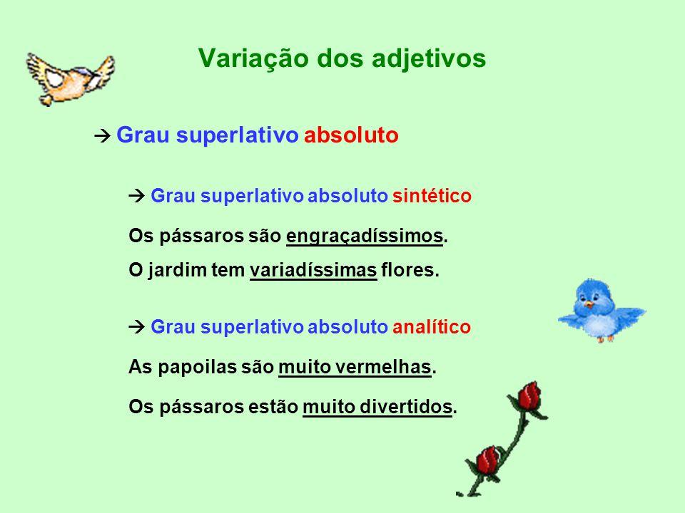 Variação dos adjetivos -grau superlativo (quando se apresenta uma qualidade num nível superior e pode utilizar-se em 2 níveis, cada um deles com 2 sub