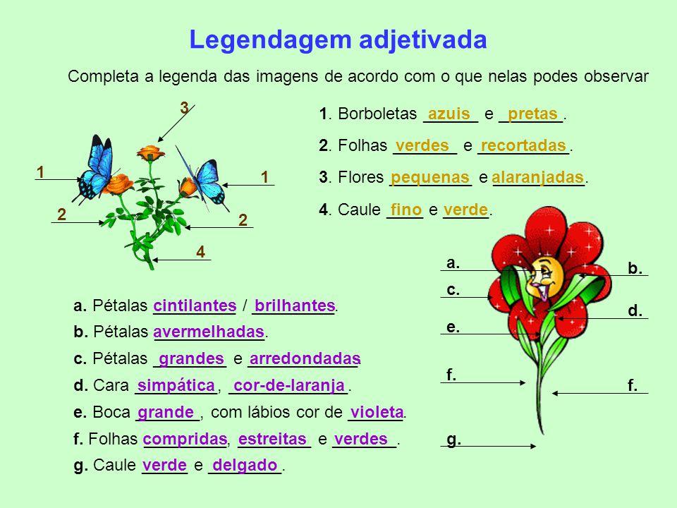 Verifica os teus conhecimentos… Refere os adjetivos das frases abaixo: No jardim há flores maravilhosas. Um peixe prateado saltava no lago azul. Os pá