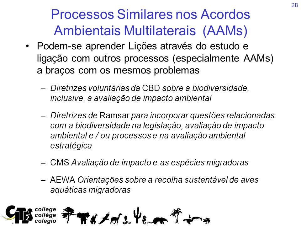 28 Processos Similares nos Acordos Ambientais Multilaterais (AAMs) Podem-se aprender Lições através do estudo e ligação com outros processos (especialmente AAMs) a braços com os mesmos problemas –Diretrizes voluntárias da CBD sobre a biodiversidade, inclusive, a avaliação de impacto ambiental –Diretrizes de Ramsar para incorporar questões relacionadas com a biodiversidade na legislação, avaliação de impacto ambiental e / ou processos e na avaliação ambiental estratégica –CMS Avaliação de impacto e as espécies migradoras –AEWA Orientações sobre a recolha sustentável de aves aquáticas migradoras