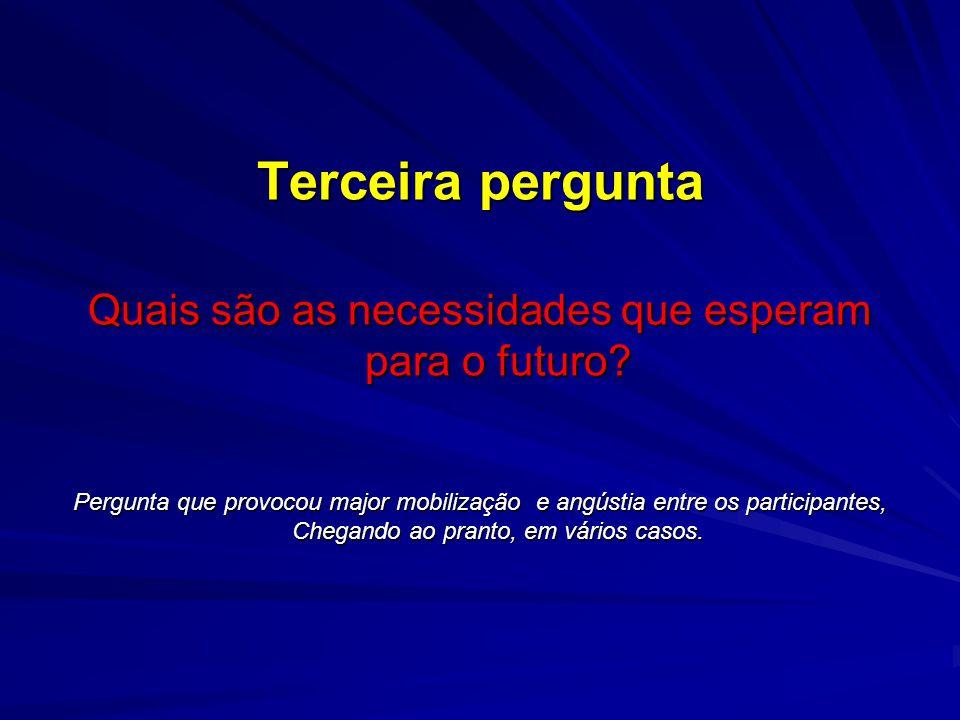 Terceira pergunta Quais são as necessidades que esperam para o futuro.
