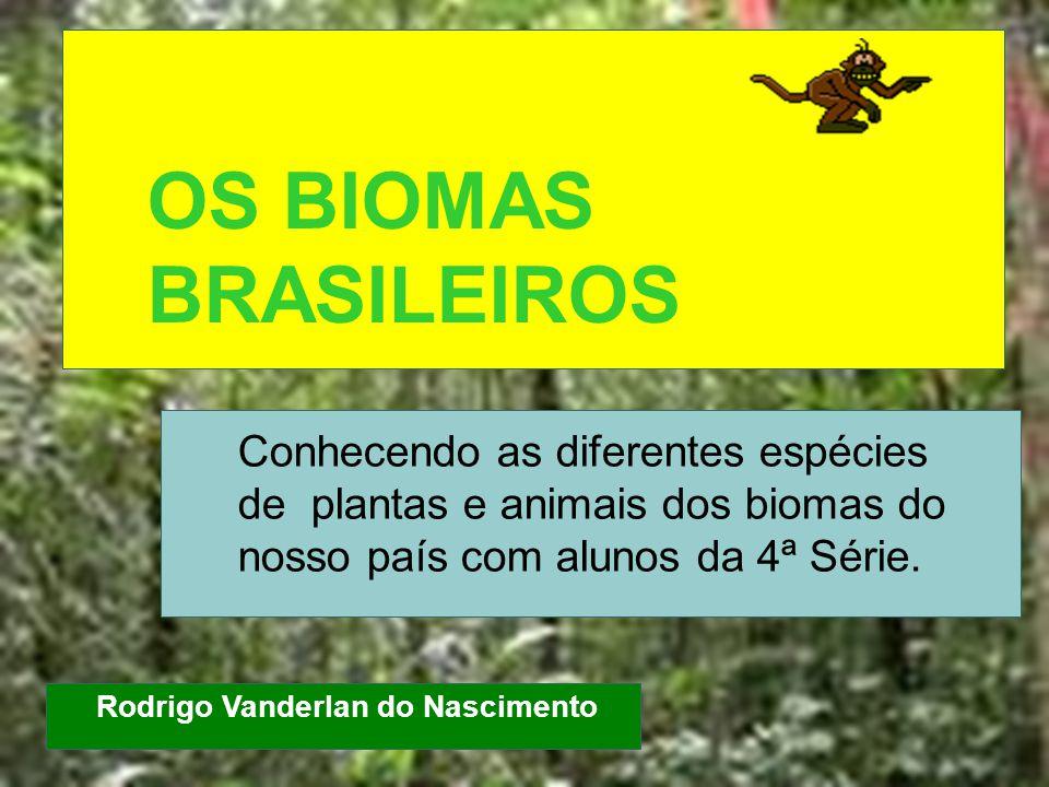 OS BIOMAS BRASILEIROS Conhecendo as diferentes espécies de plantas e animais dos biomas do nosso país com alunos da 4ª Série. Rodrigo Vanderlan do Nas