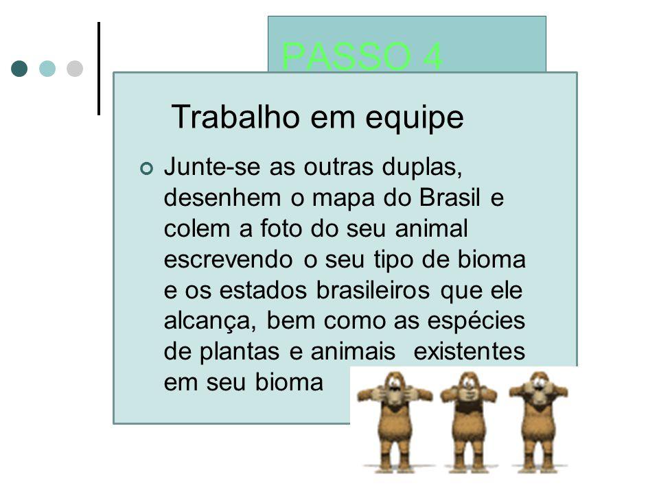 PASSO 4 Trabalho em equipe Junte-se as outras duplas, desenhem o mapa do Brasil e colem a foto do seu animal escrevendo o seu tipo de bioma e os estad