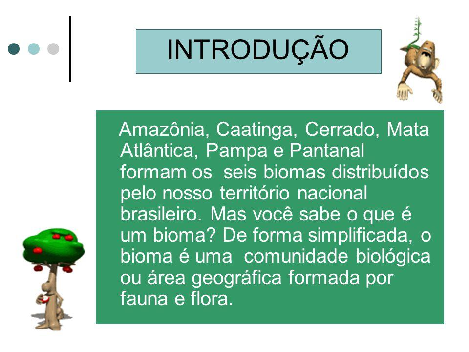 INTRODUÇÃO Amazônia, Caatinga, Cerrado, Mata Atlântica, Pampa e Pantanal formam os seis biomas distribuídos pelo nosso território nacional brasileiro.
