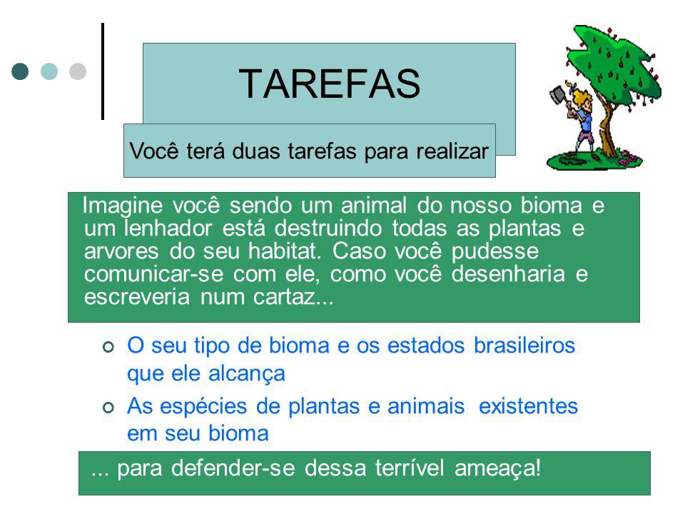 TAREFAS Imagine você sendo um animal do nosso bioma e um lenhador está destruindo todas as plantas e arvores do seu habitat. Caso você pudesse comunic