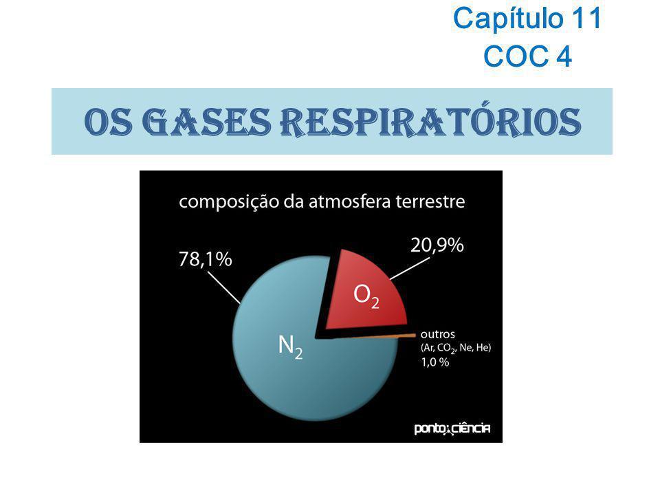 OS GASES Respiratórios Capítulo 11 COC 4