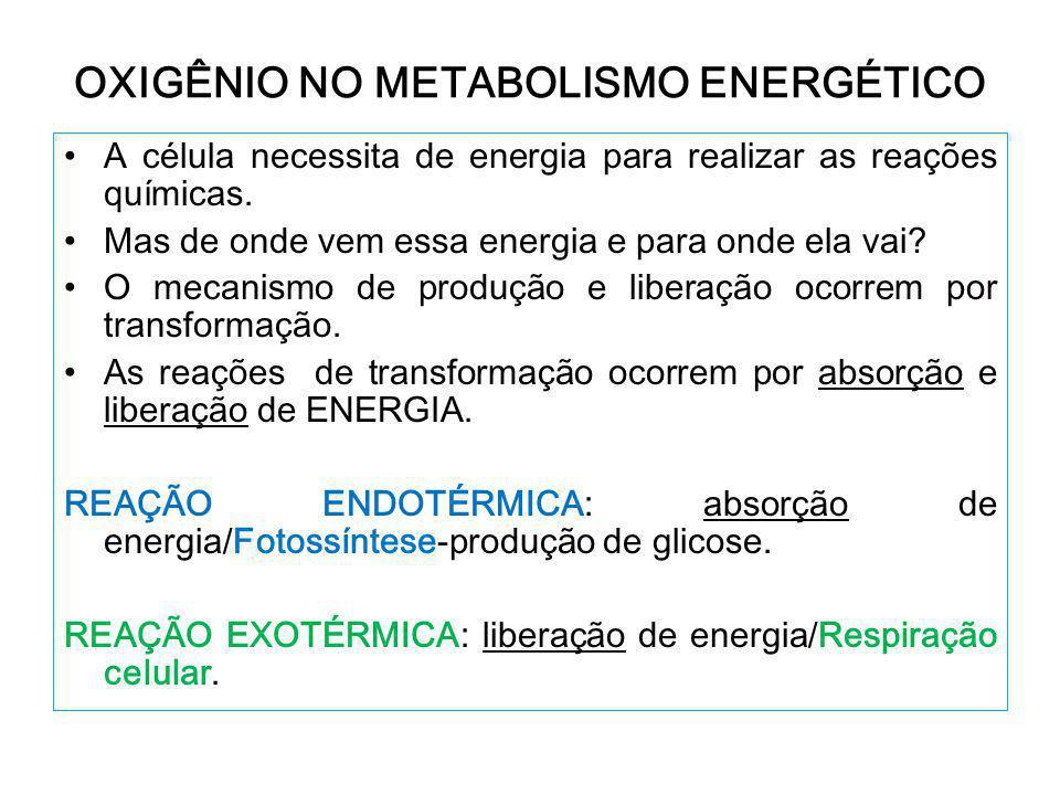 OXIGÊNIO NO METABOLISMO ENERGÉTICO A célula necessita de energia para realizar as reações químicas.