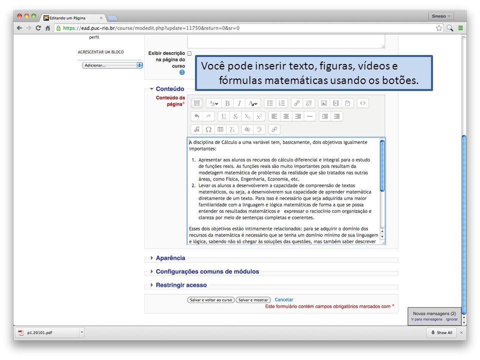 Você pode inserir texto, figuras, vídeos e fórmulas matemáticas usando os botões.