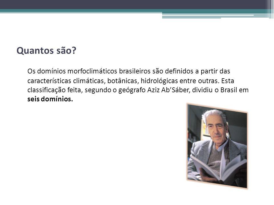 Quantos são? Os domínios morfoclimáticos brasileiros são definidos a partir das características climáticas, botânicas, hidrológicas entre outras. Esta