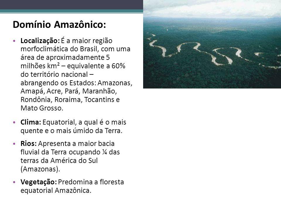 Domínio Amazônico: Localização: É a maior região morfoclimática do Brasil, com uma área de aproximadamente 5 milhões km² – equivalente a 60% do territ