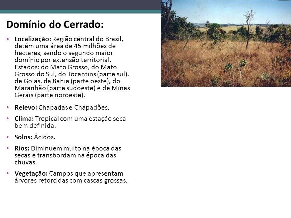 Domínio do Cerrado: Localização: Região central do Brasil, detém uma área de 45 milhões de hectares, sendo o segundo maior domínio por extensão territ