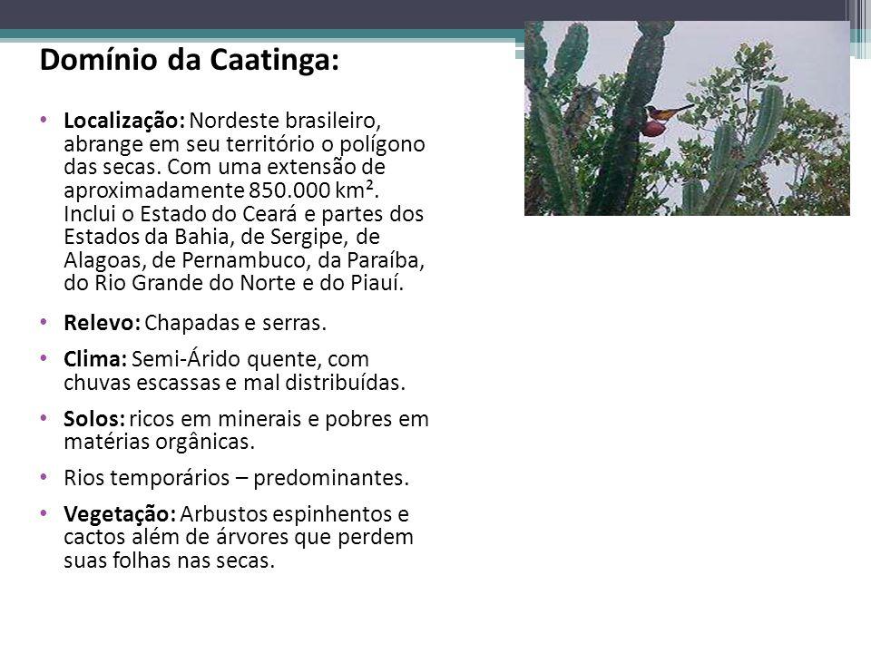 Domínio da Caatinga: Localização: Nordeste brasileiro, abrange em seu território o polígono das secas. Com uma extensão de aproximadamente 850.000 km²