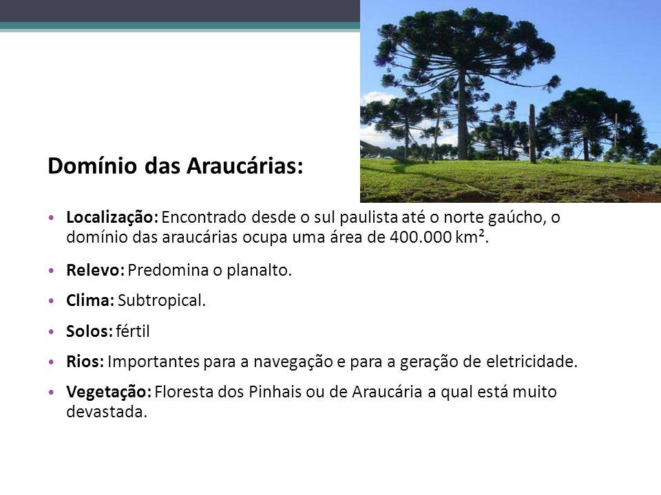 Domínio das Araucárias: Localização: Encontrado desde o sul paulista até o norte gaúcho, o domínio das araucárias ocupa uma área de 400.000 km². Relev