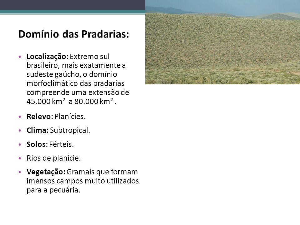 Domínio das Pradarias: Localização: Extremo sul brasileiro, mais exatamente a sudeste gaúcho, o domínio morfoclimático das pradarias compreende uma ex